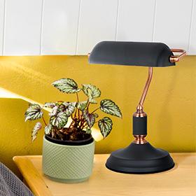מנורות רצפה / שולחן / לילה