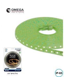 סרט לדים אור ירוק כולל מישר זרם